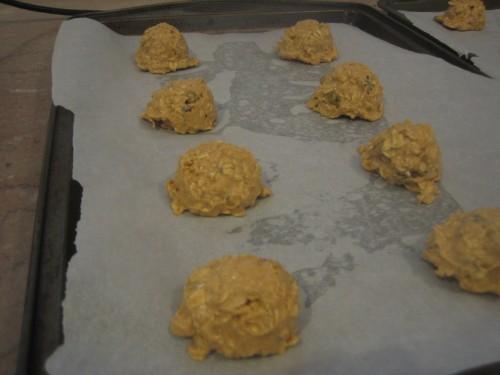 Soup Cookies 028