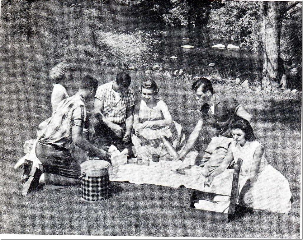 Picnicking Is A Favorite Teenage Activity