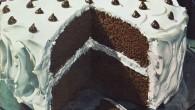 Chocolate-Mocha-Dot-Cake-Baking-Is-Fun-by-Ann-Pillsbury-1945001.jpg