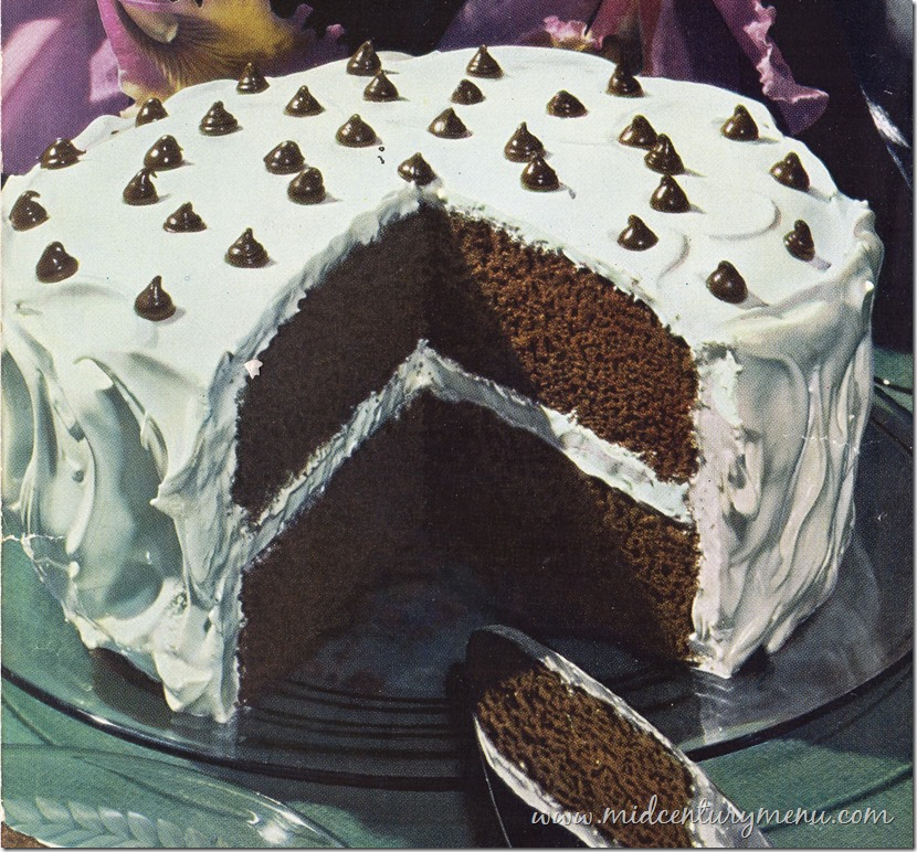 Chocolate Mocha Dot Cake Baking Is Fun by Ann Pillsbury 1945001