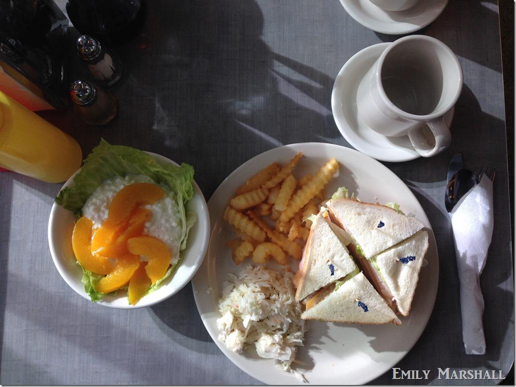 club sandwich and peaches
